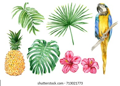 Set of hand-drawn watercolor elements. Macaw parrot, pineapple, hibiscus, palm trees, and tropical leaves.
