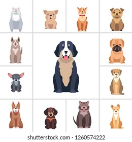 Set of happy doggies portraits, pets are sitting with smiling muzzle and hanging out tongue flat raster illustration isolated on white.