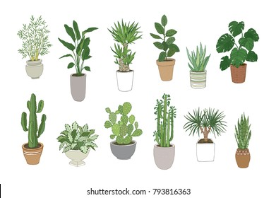 Set of house indoor plant cartoon doodle illustration.