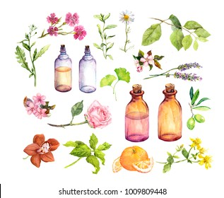 Set of ingredients for cosmetic, perfumery and medical oils. Herbs and flowers, bottles. Watercolor collection