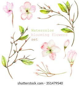 A set with the isolated floral decorative elements in the form of the watercolor blooming flowers, leaves and branches with the buds for a wedding or other decoration