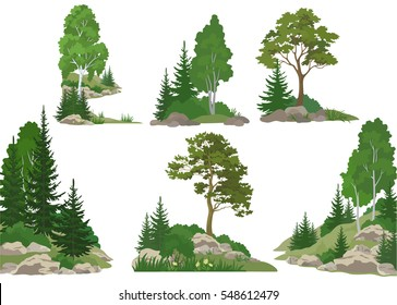 Set Landscapes, Isolated on White Background Coniferous and Deciduous Trees, Flowers and Grass on the Rocks.