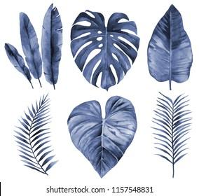Set of leaves. Blue leaves. Watercolour illustration on white.