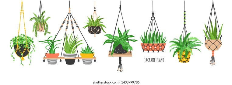 Set of macrame hangers for plants growing in pots. Bundle of hanging planters made of cotton cord, beautiful handmade home decorations isolated on white background. Cartoon flat illustration.