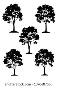 Set Maple Trees on Grass, Black Silhouette Isolated on White Background.
