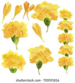 set of marigold flowers and petals. Traditional rural indian floral garland for celebration. illustration of Flower Toran for Decoration in Indian festival. Watercolor illustration.
