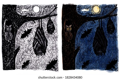 Set of monochrome and color illustrations for Halloween. The bat sleeps upside down on a tree in the dark.