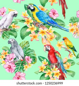 Set of parrots, macaw with tropical plants. Seamless patterns, wallpaper with exotic birds. Watercolor. Illustration. Template. Hand drawn. Close-up. Clip art.