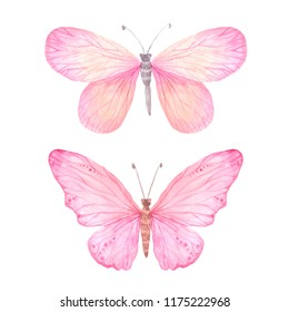 Set of pink bright watercolor butterflies isolated on white. Hand painted exotic butterflies design perfect for wedding invitations and card making