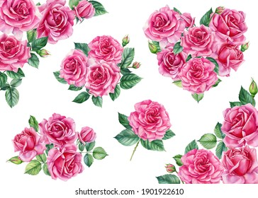 Set of pink roses, Heart, flower decorations on white background, watercolor illustration, valentine's day