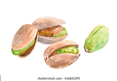set of pistachio nuts on a white background, nuts isolated, watercolor illustration