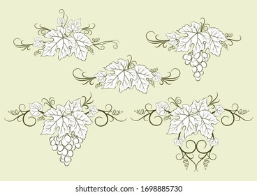Set of Plant Pictograms, Grape Berries and Leaves Contours.