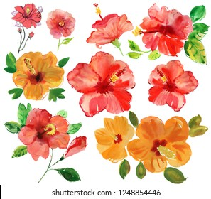set of red and orange tropical flowers. Watercolor painting.