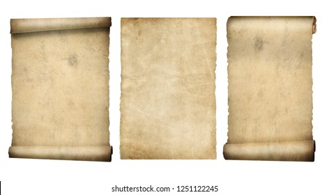 set of scrolls or parchment isolated on  white 3d illustration