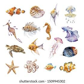 Set of sea animals. Watercolor graphic. Underwater world.