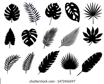 Set of Silhouette Tropical Palm Leaves