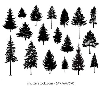Set. Silhouettes of pine trees. Hand made.
