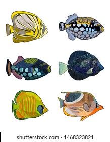 set of six colorful fishes