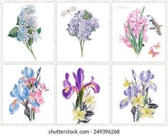 Set der sechs Aquarellblumen einzeln auf Weiß.