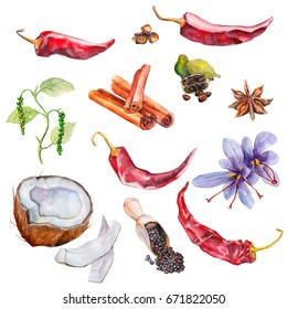The set of spices, watercolor illustration, isolated objects on white background.