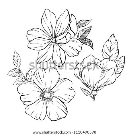 Set spring flowers black line work stock illustration 1110490598 set of spring flowers black line work details bloom with leaves tenderness mightylinksfo