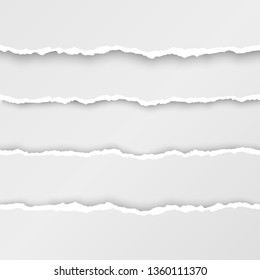 Set of torn paper stripes. Paper texture with damaged edge. Isolated illustration