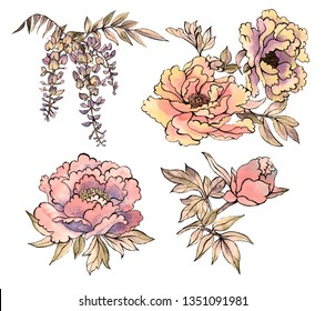 Set with traditional Asian watercolor flowers, chrysanthemums, peonies, dahlias, wisteria on a white background. Asia culture symbols bundle. Chinese sketches. Asian drawings collection. China. Japan.