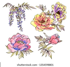 Set with traditional Asian watercolor flowers, chrysanthemums, peonies, dahlias, wisteria on a white background. Asia culture symbols bundle. Chinese sketches. Asian drawings collection.