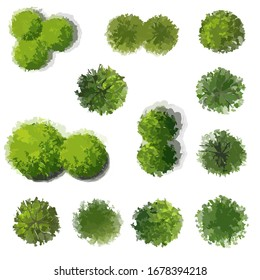 Set of tree top view isolated on white background for landscape plan or gardening