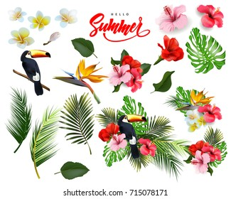 A set of tropical flowers,  palm leaves, Toucan. Summer  background Concept with tropical flowers hibiscus.