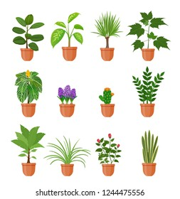 Set of twelve houseplant with flowers in a pot in flat style. Indoor gerb on shelf isolated on a white background.