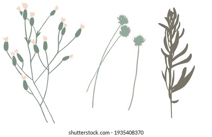 Set of twigs and flowers. 2D illustration. Botanical painting for wallpaper and textile design. Herbal drawing for fashion industrial. Decorative elements for wrapping paper and cover print.