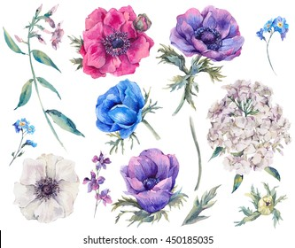 Set vintage watercolor elements of blooming anemones, garden and wild flowers, leaves branches flowers, watercolor illustration isolated on white background