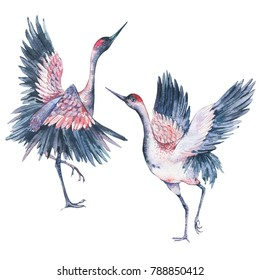 Set of vintage watercolor pair red heads crane isolated on white background, Animal collection, Hand painted illustration