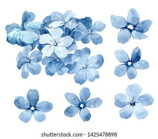 Set of watercolor blue flowers. Poppies, anemones and summer flowers. Summer decoration print for wrapping, wallpaper, fabric.
