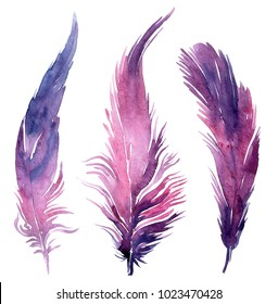Set of watercolor boho feather illustrations. Easter clip art set, isolated on white background