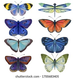 set of watercolor butterflies. bright butterflies isolated on a white background. for cards and print.