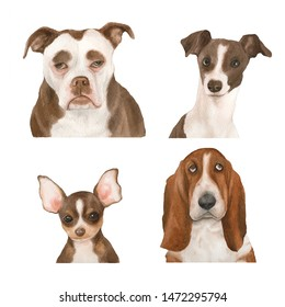 Set of watercolor dogs, Pit bull, Greyhound, Chihuahua, Basset hound isolated on white background
