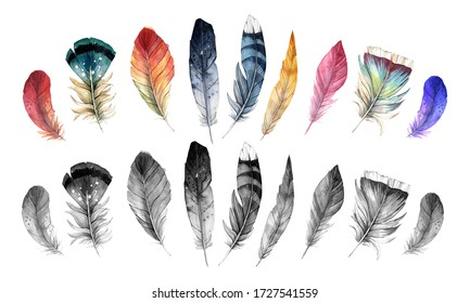 Set of watercolor feathers of different birds. Different colors and handicrafts of hand-drawn feathers, isolated on white background. For tattoo and your creativity
