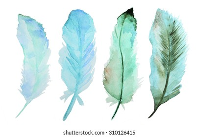 Set of watercolor feathers. A set of four color watercolor feathers