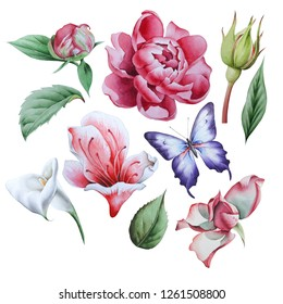 Set with watercolor flowers. Eustoma. Peony. Calla.  Hand drawn.