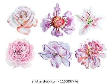 Fleur De Lys Dessin Images Stock Photos Vectors Shutterstock