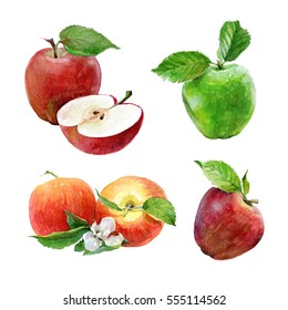 Set of watercolor green and red apples on a white background. Sliced fruit.  Peeled half apple.  Red apple illustration.