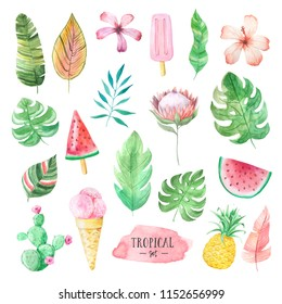 Set of Watercolor hand painted tropical flowers, leaves, fruits and icecream. Bright jungle exotic clip art perfect for summer wedding invitation and party card making