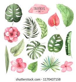 Set of Watercolor hand painted tropical flowers, leaves and plants. Bright jungle exotic clip art perfect for summer wedding invitation and party card making
