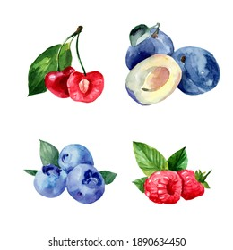 Set of watercolor illustrations with berries. Raspberries, blueberries, plums, cherries on a white background. Healthy food. Vegetarianism.