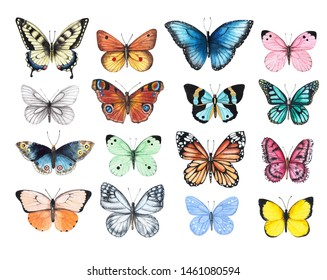 Set of watercolor illustrations depicting bright butterflies isolated on a white background, hand-painted