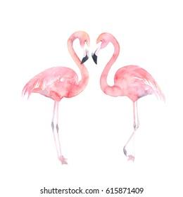 Set watercolor random flamingos. Isolated illustration. Couple birds
