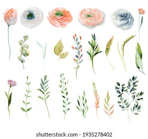 Set of watercolor spring pink and red wildflowers and green branches; hand painted isolated illustrations on a white background