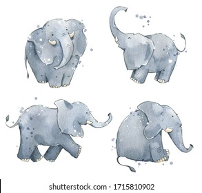 Set of watercolour elephants, hand painted illustration